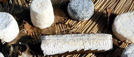 Discover the traditionnal French Cheese